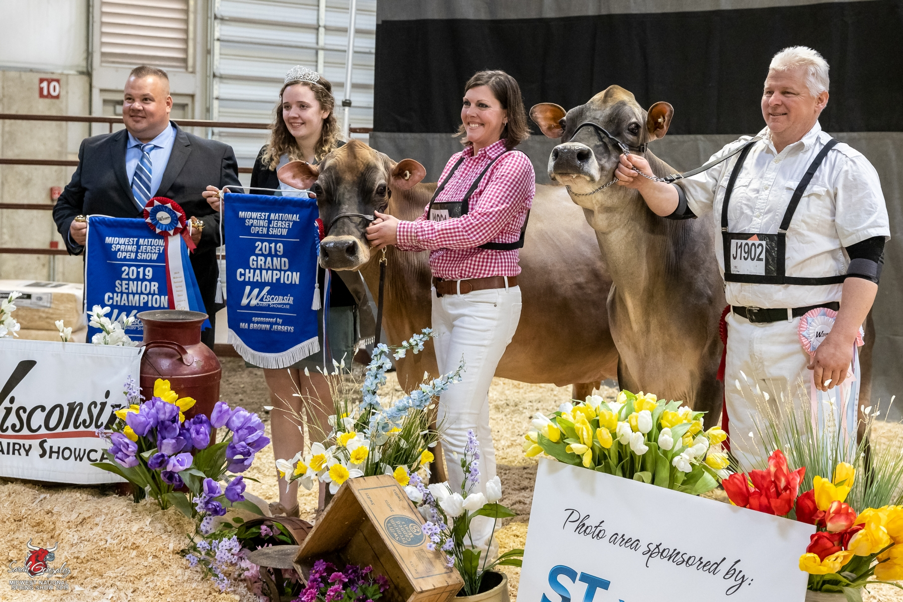 Midwest National Spring Jersey Show 2019 :: The Bullvine - The Dairy