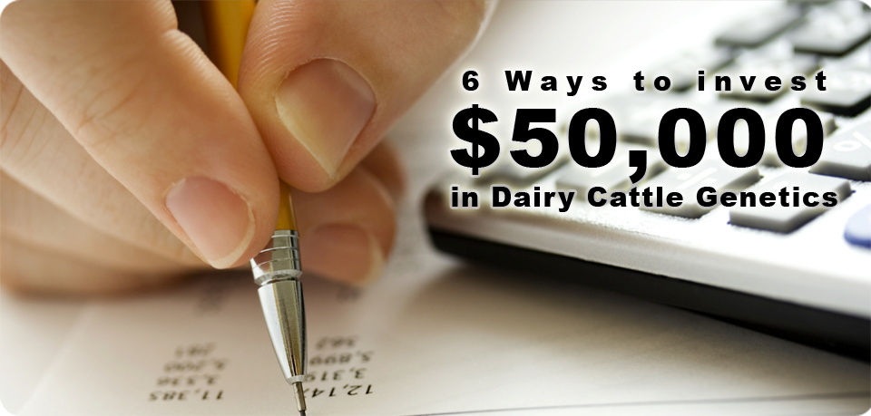 6 Ways to Invest $50,000 in Dairy Cattle Genetics