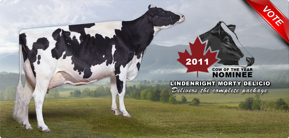 Lindenright Morty Delicio: 2011 Canadian Cow of the Year Nominee
