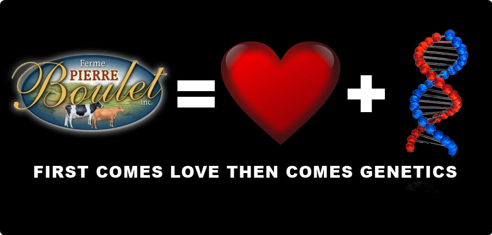 FERME PIERRE BOULET: First Comes Love Then Comes Genetics
