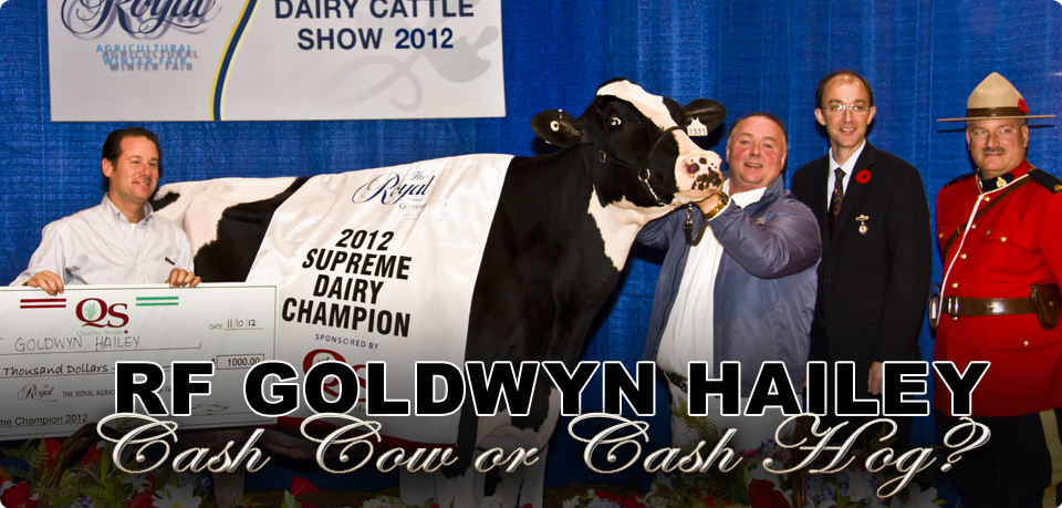 RF Goldwyn Hailey: Cash Cow or Cash Hog?