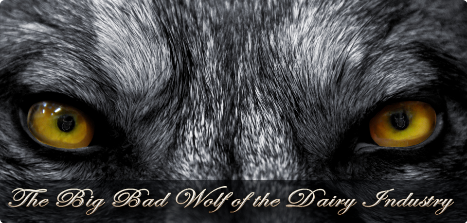 The Big Bad Wolf of the Dairy Industry