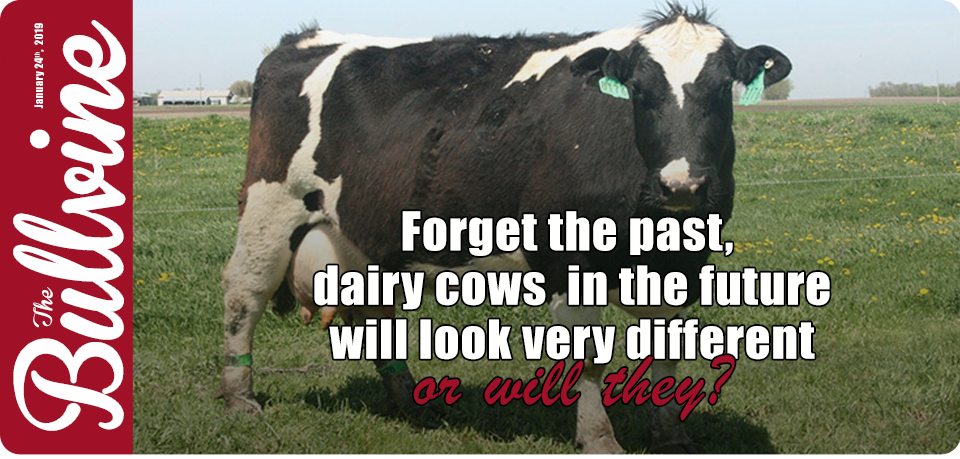 Forget the past, dairy cows in the future will loo…