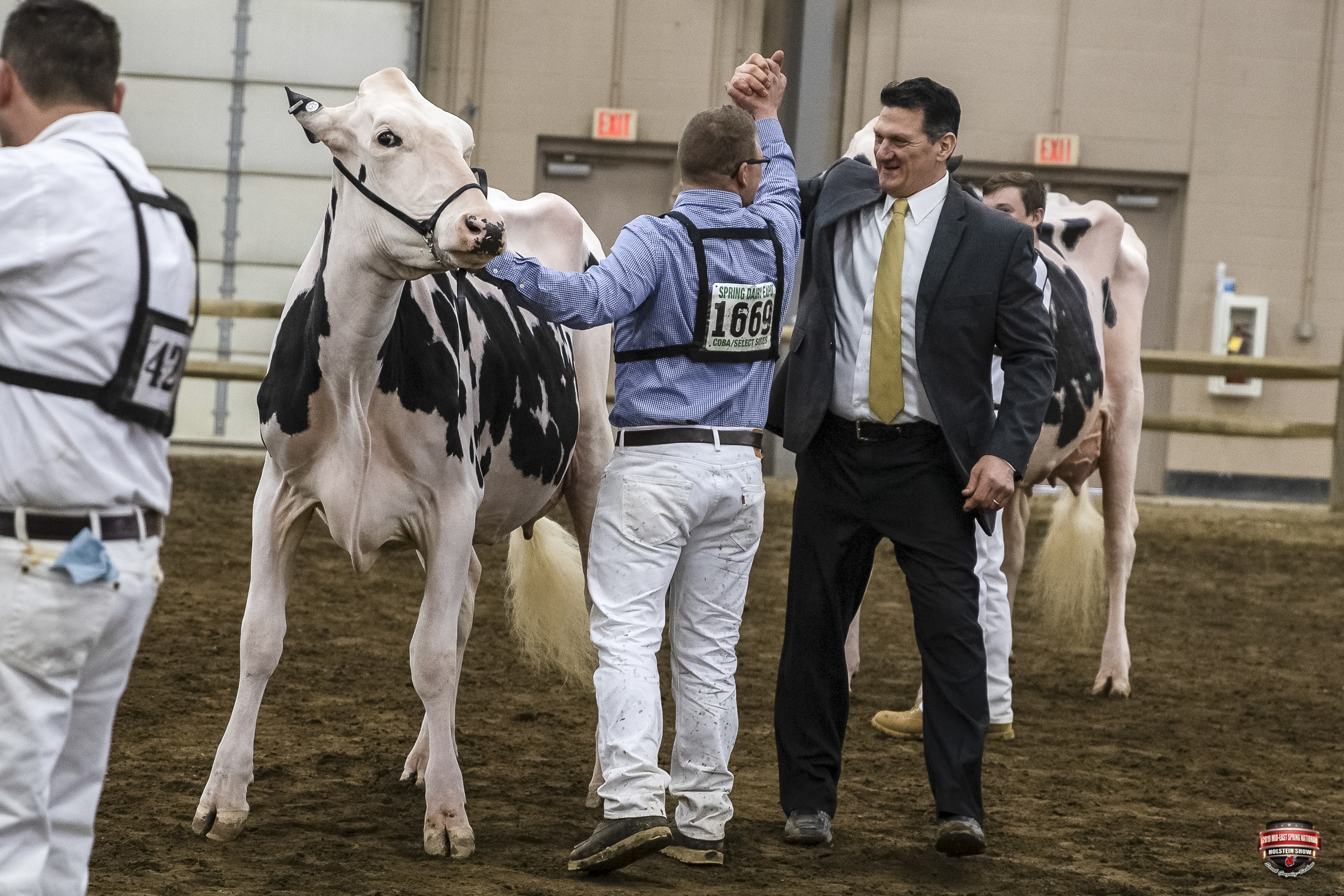 2019 Mid-East Spring National Holstein Show