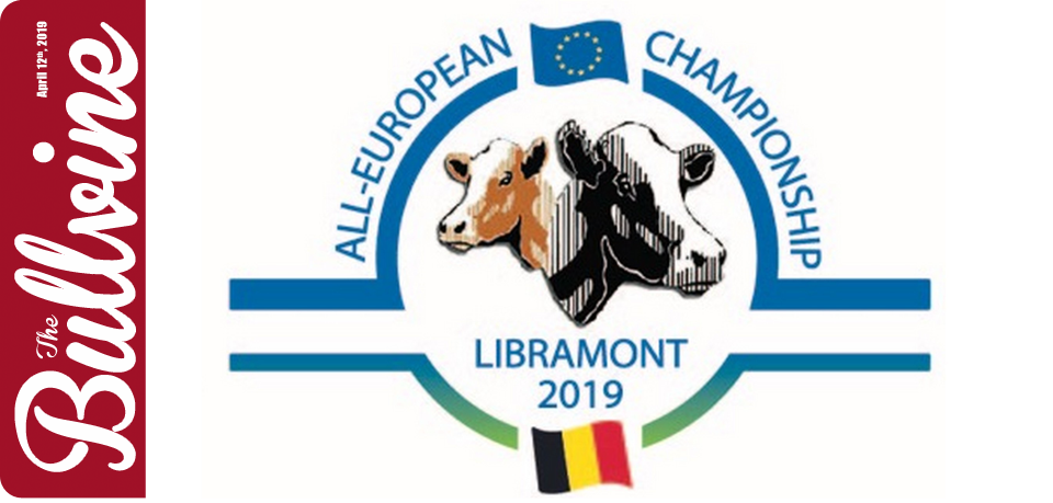 All-European Championship Holstein Show 2019