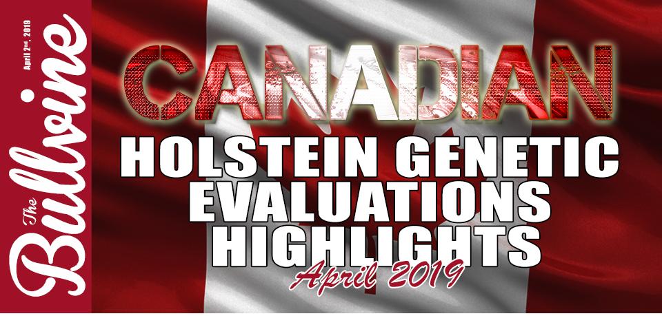 "Canadian Holstein Highlights – April 2019 – ""Duke""…"