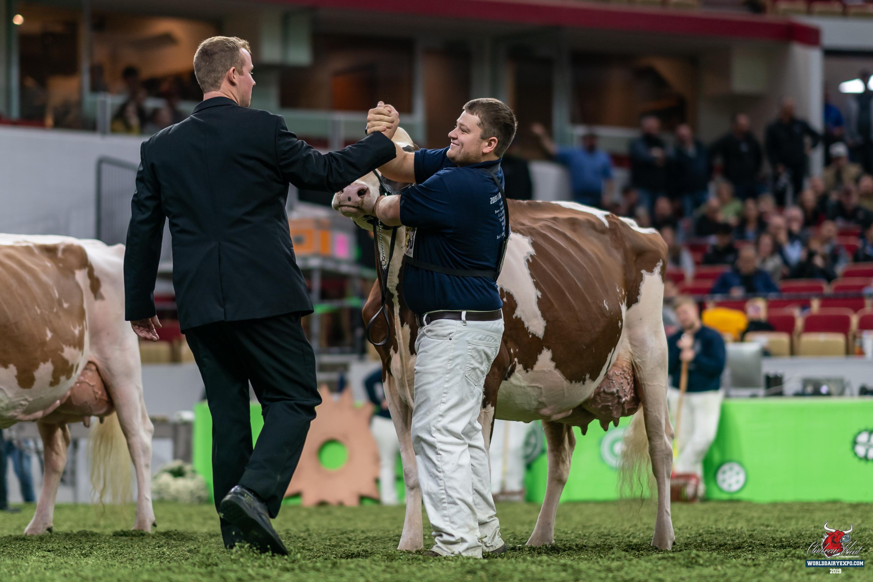 International Red & White Holstein Show – World Da…