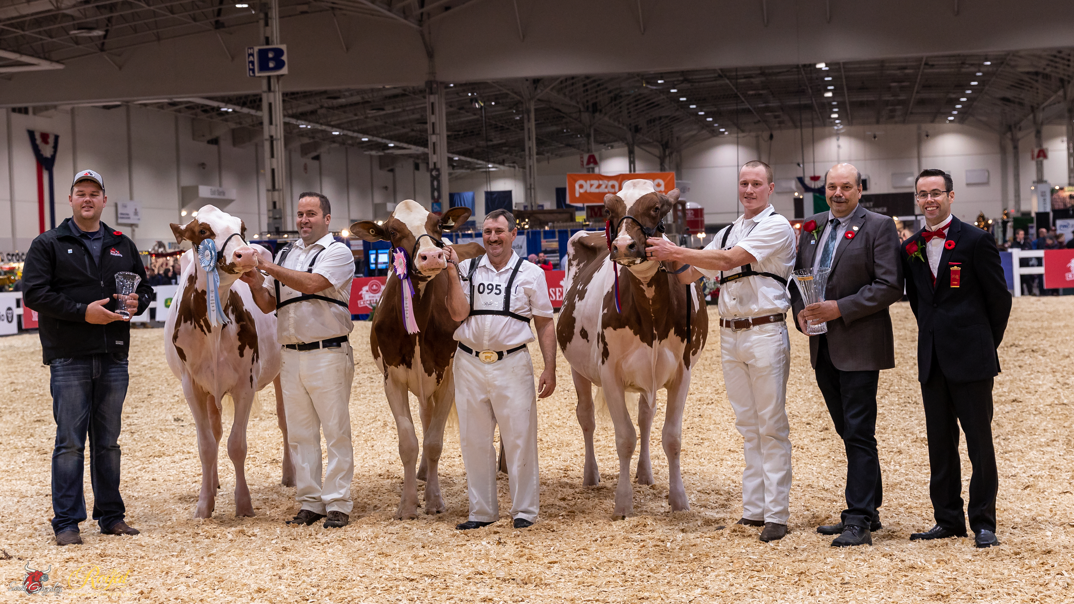 Canadian National Red & White Holstein Show 2019