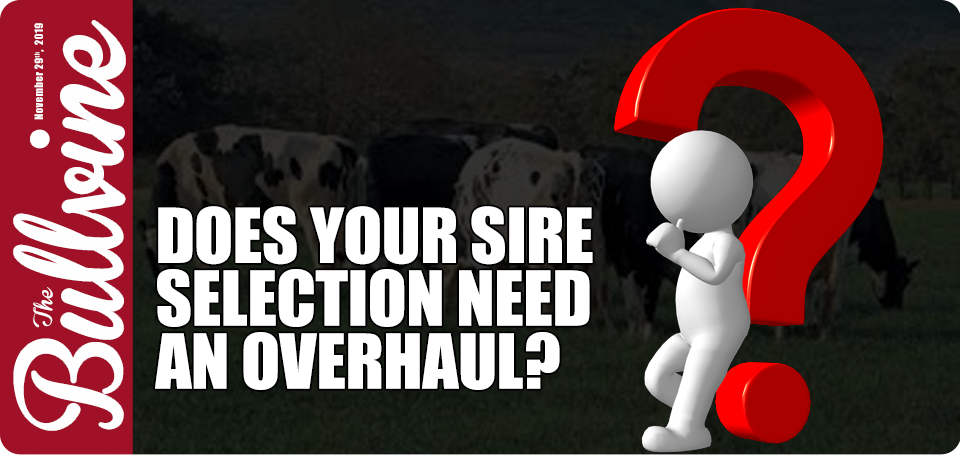 Does Your Sire Selection Need an Overhaul?