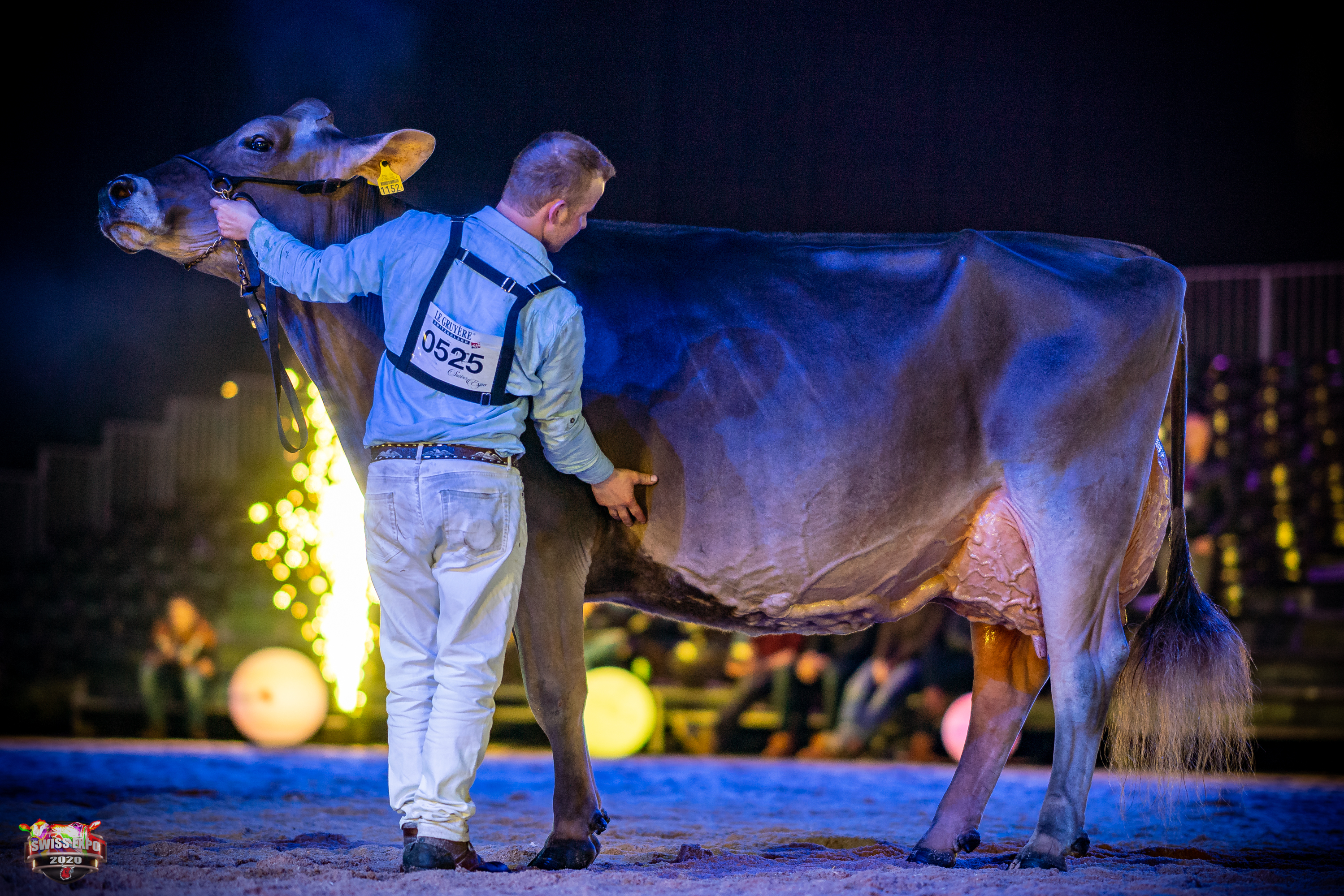 Swiss Expo Brown Swiss Show 2020