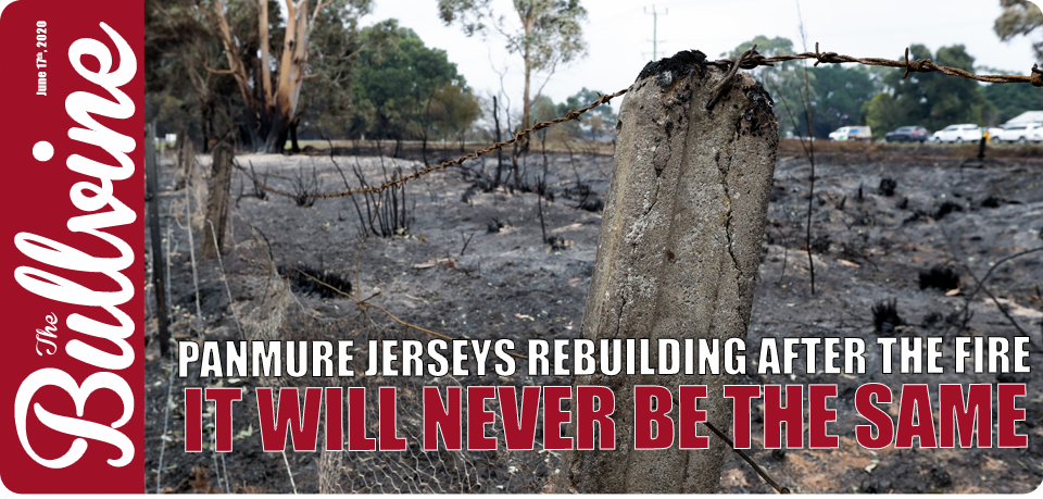 Panmure Jerseys Rebuilding After The Fire – It Wil…
