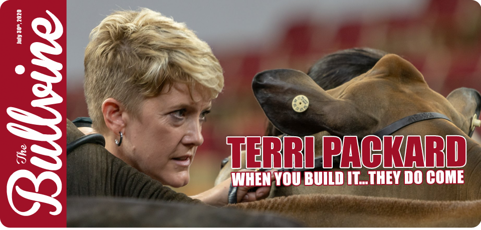Terri Packard: When you build it…they do come