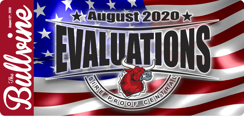 US Holstein Highlights – August 2020