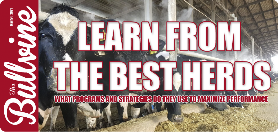 Learn from The Best Herds –  What Programs and Str…