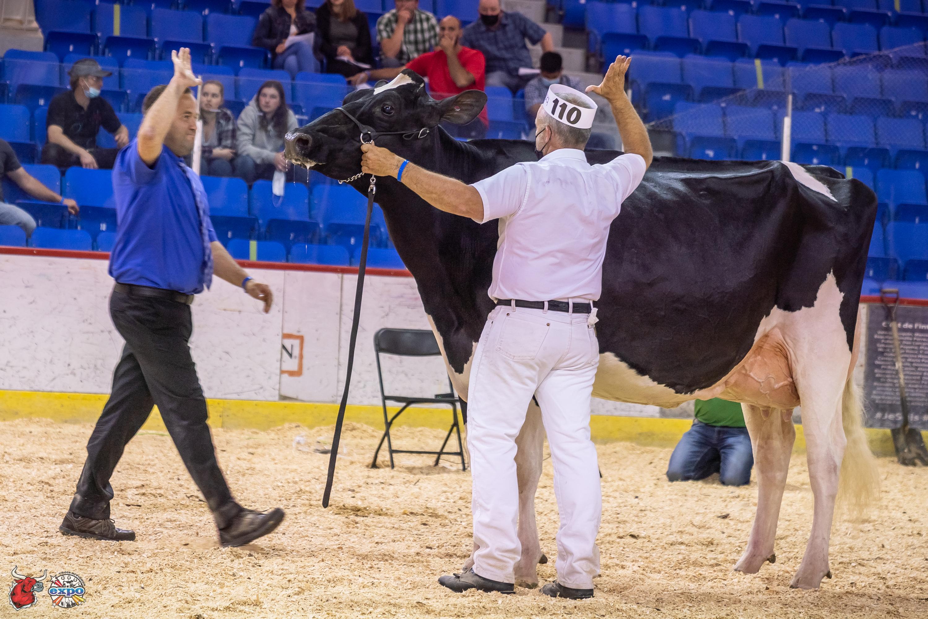 Trois-Rivieres Holstein Show 2021