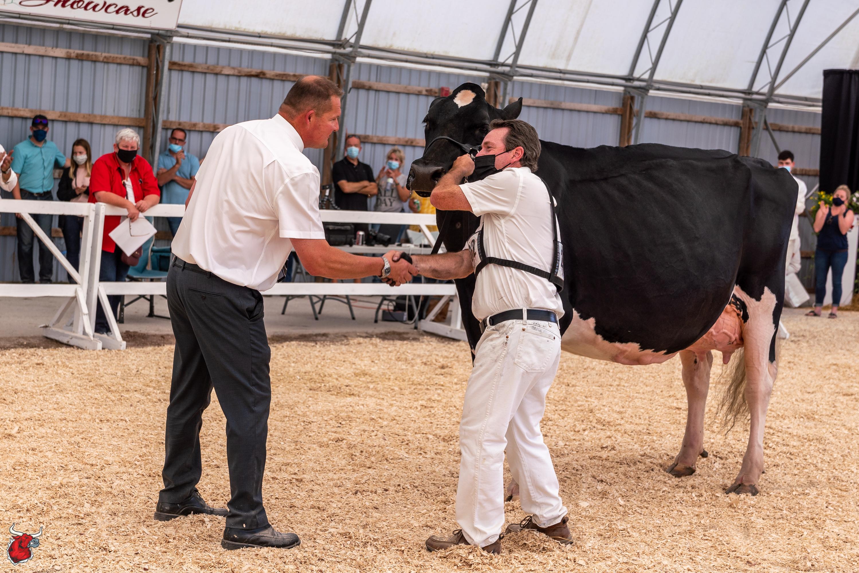 Ontario Summer Holstein Show 2021
