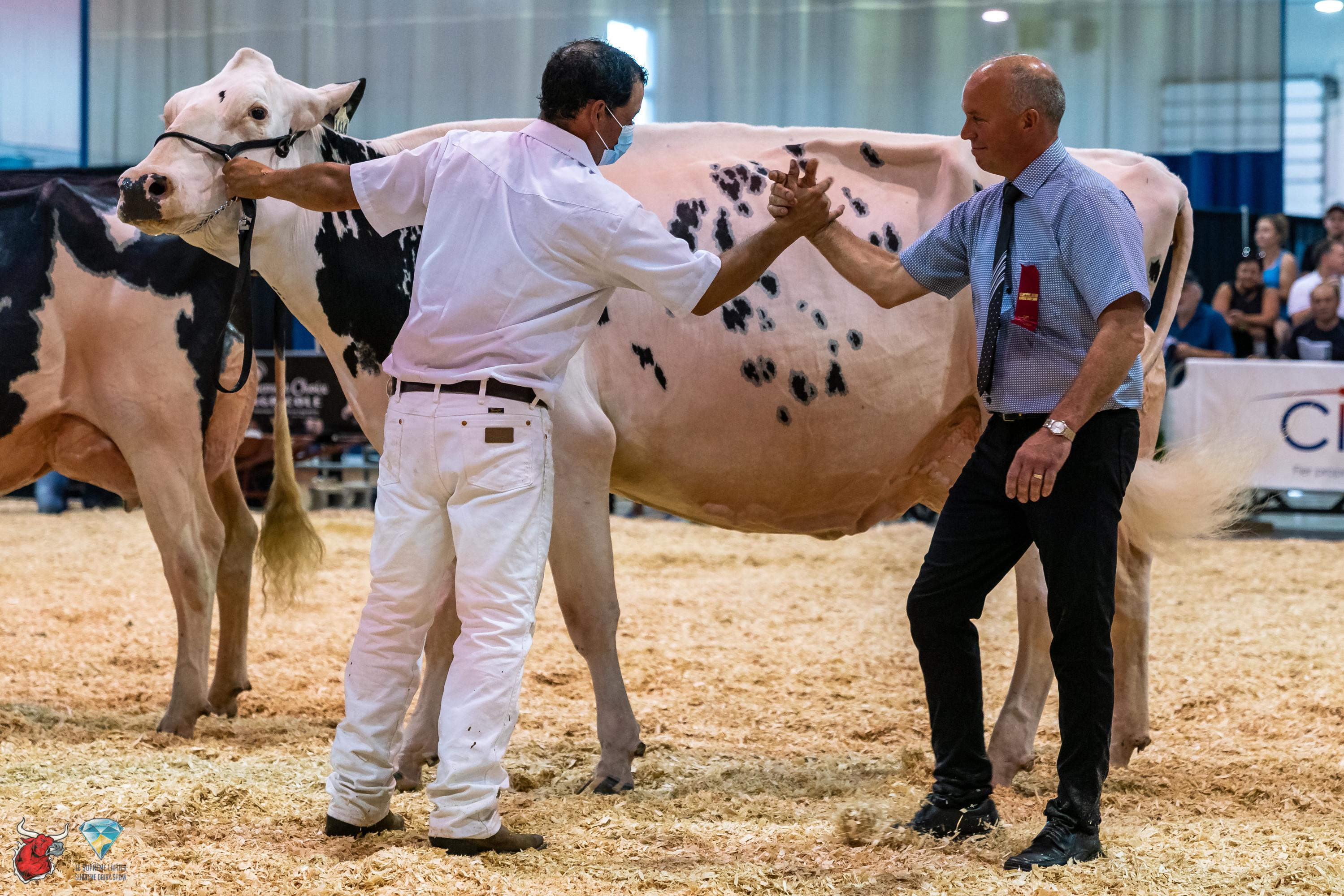 Le Supreme Laitier 2021 – Holstein Show