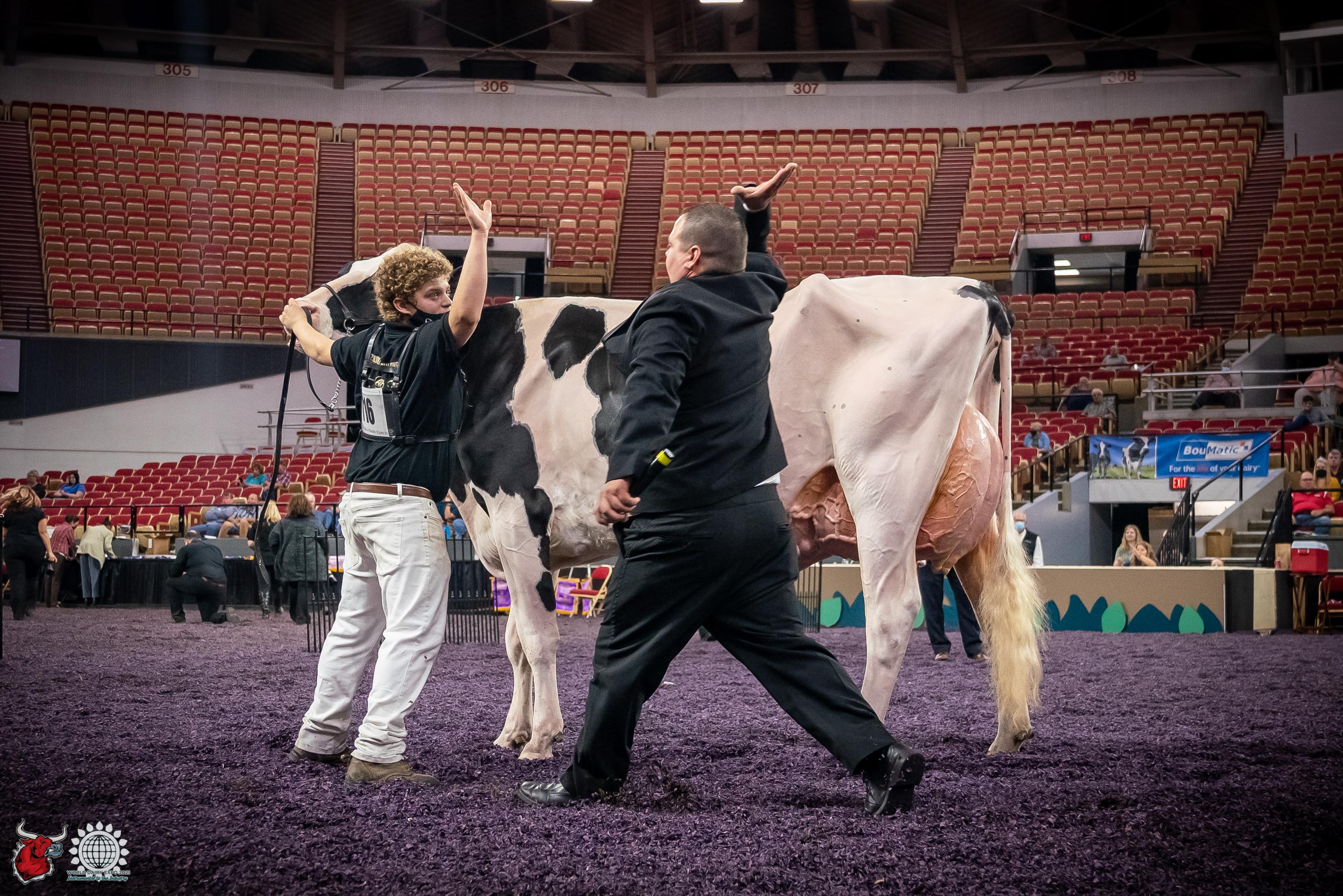International Junior Holstein Show  – World Dairy…