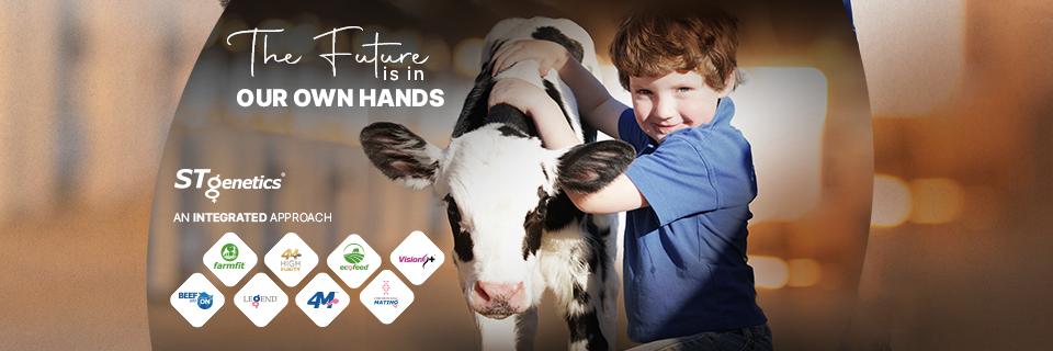 International Milking Shorthorn Show – World Dairy…