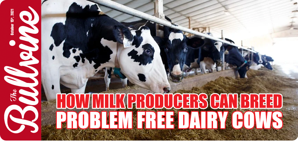 How Milk Producers Can Breed Problem Free Dairy Co…